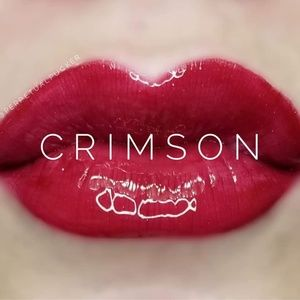 "🔥 HOST PICK! LIMITED EDITION ""CRIMSON"" LipSense ❤"